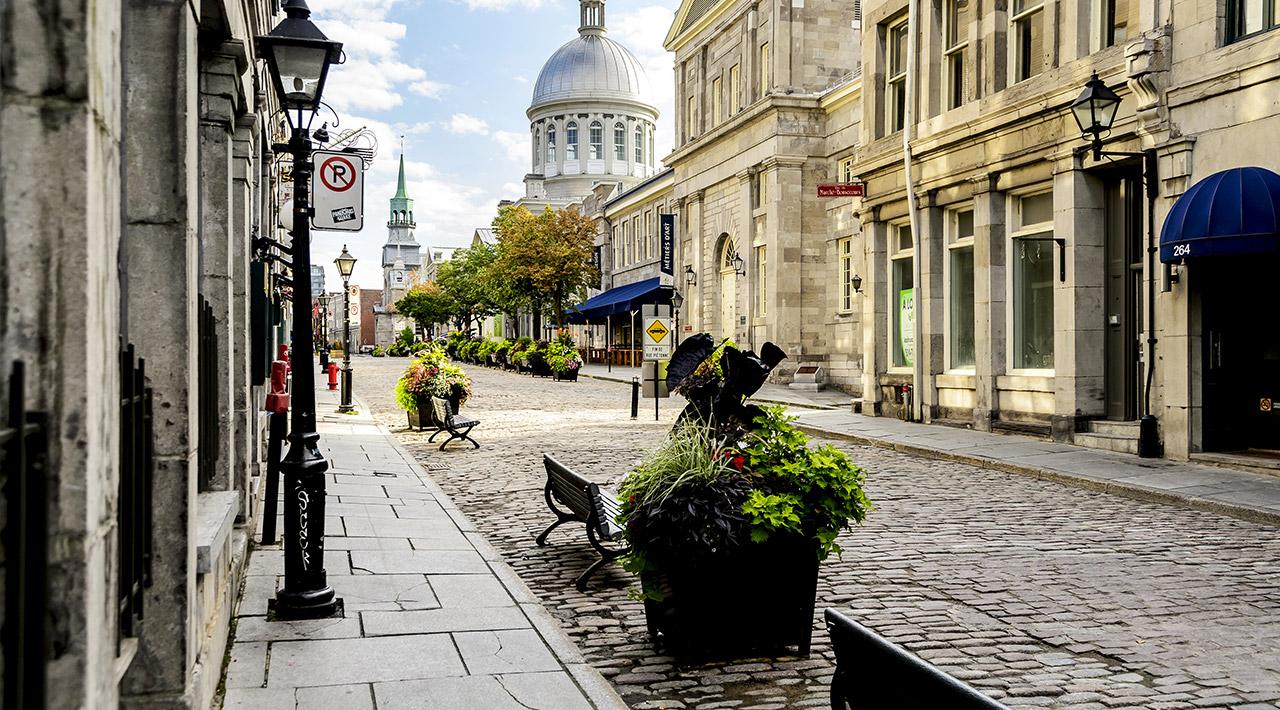 Montréal l'été! Nos coups de cœur pour 2015