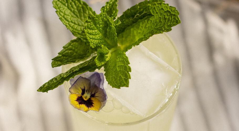 Le jus vert: limonade céleri et melon
